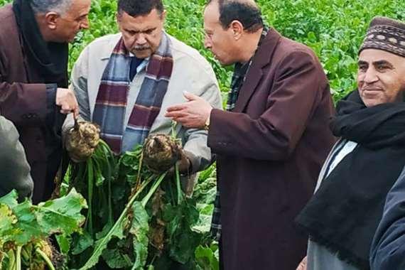 """استعدادات """"الدلتا للسكر"""" لاستقبال محصول البنجر من المزارعين"""