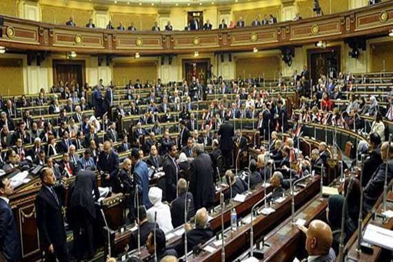 تحرك برلماني عاجل لتغليظ عقوبة الاعتداء على الطيور والأسماك