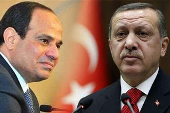 أردوغان للسيسي : أنت قاتل !