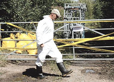 اكتشاف حالة انفلونزا طيور بمزرعة للبط في بريطانيا