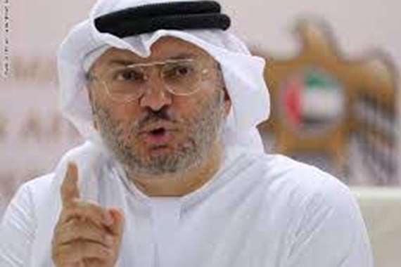 وزير الدولة للشئون الخارجية الإماراتية  الدكتور أنور قرقاش