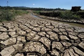 التغير المناخي يهدد الحياة في أفريقيا