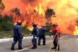 حرائق بغابات البرتغال