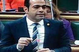النائب الدكتور محمود حسين
