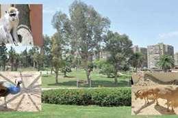 احدى حدائق الحيوان فى مصر