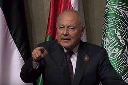 اشتباك بين «أبو الغيط» وصحفي في «قمة بيروت»