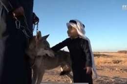 مواطن سعودي يعيش مع اذلئاب