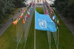 الامم المتحدة ارشيفية