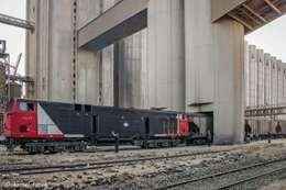 قطارتا نقل القمح