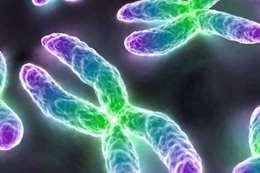 الجينات البشرية