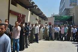 مصريون يتقدمون لوظائف  ارشيفية