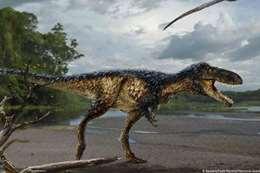 فصيلة جديدة من الديناصورات