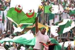 جماهير الجزائر تشعل مدينة ساوباولو البرازيلية