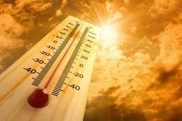«الأرصاد»: موجة حارة بداية من الغد