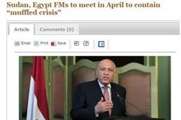 وزير الخارجية سامح شكري في مؤتمر صحفي (سودان تريبون)