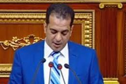النائب علاء سلام  أمين سر لجنة البيئة والطاقة
