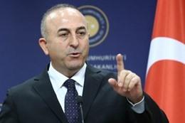 وزير الخارجية التركى مولود جاويش أوغلو