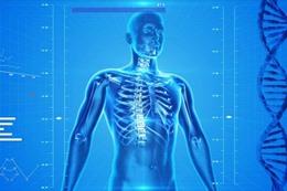 الفرق الحقيقي بين الجسم والجسد والبدن