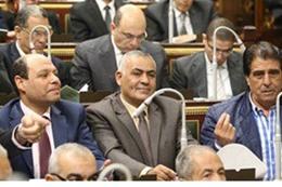 سيد أبو بريدعة في البرلمان