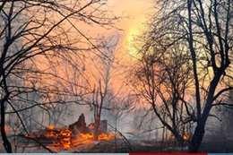 """كارثة إنسانية.. حرائق الغابات تقترب من """" تشيرنوبل النووية"""""""