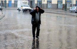 الأرصاد تحذر: أمطار غزيزرة الجمعة