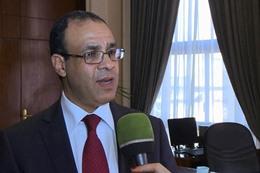 السفير بدر عبد العاطي
