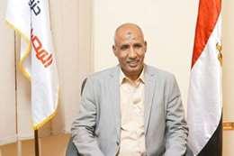 عامر الحناوي، عضو مجلس النواب