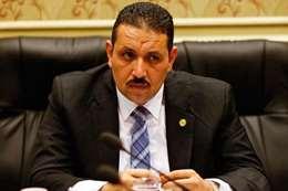 حامد جلال جهجه، عضو مجلس النواب