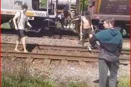 صورة من المقطع