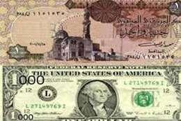 استقرار الدولار أمام الجنيه في التعاملات  الصباحية