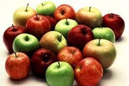 ثمار التفاح