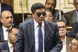 خالد حنفي، عضو مجلس النواب