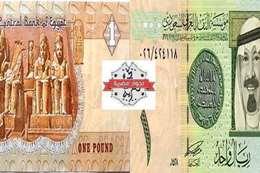 الريال السعودي والجنيه المصري