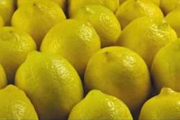 الليمون