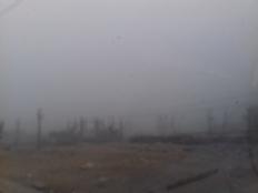 شبورة مائية تغطي سماء أسيوط