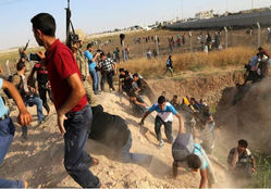 """800 سوري يدخلون تركيا هرباً من الاشتباكات في """"تل أبيض"""""""