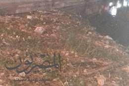 بحر يوسف ومقالب للقمامة