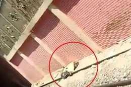 جثة شاب انتحر أمام قطار مترو بمحطة المرج