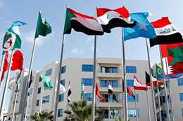أعلام الوطن العربى