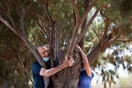 بحضن الأشجار.. إسرائيل تعالج مصابي كورونا