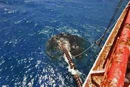ناقلة نفط ضخمة تهدد بكارثة بيئية وإنسانية بالبحر الأحمر