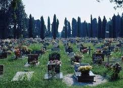 رجل ينبش قبر والده ليتشاجر معه بعد ثلاثين عاما