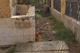 حملة علي المجازر الحكومية  بمركز إدفو