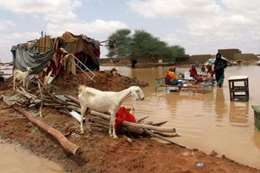 السيول في السودان