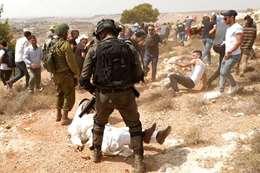 الاحتلال يعتدي على فلسطينيين مناهضين للاستيطان