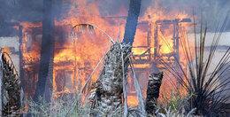 حريق بمزرعة دواجن بإيتاي البارود يلتهم 800 كتكوت