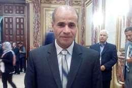 بدير عبد العزيز, عضو مجلس النواب