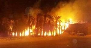 حريق هائل يلتهم مزرعة نخيل بالوادى الجديد