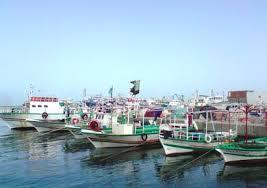 غلق ميناء البرلس ووقف الصيد بكفر الشيخ