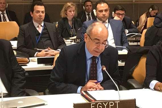 مندوب مصر الدائم لدى الأمم المتحدة في نيويورك
